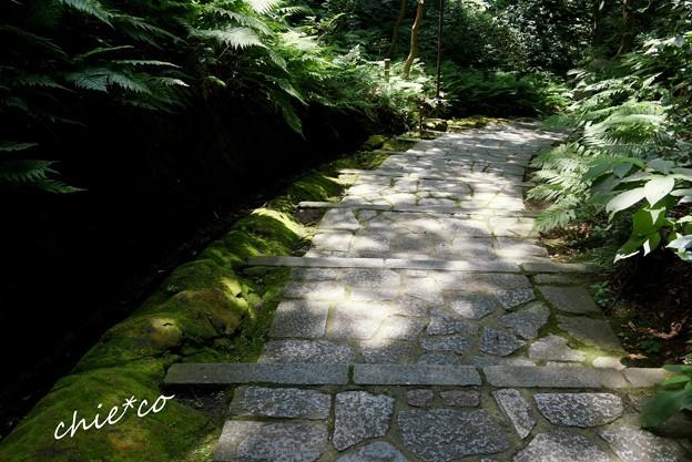 瑞泉寺-090