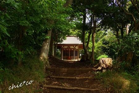 吾妻山公園-029