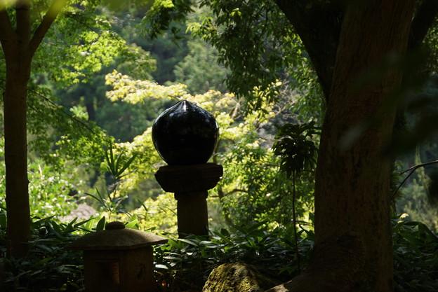 長月の円覚寺-077