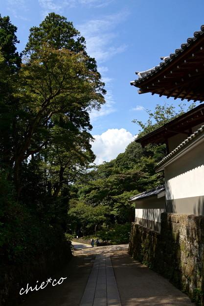長月の円覚寺-266