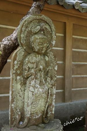 長月の円覚寺-270