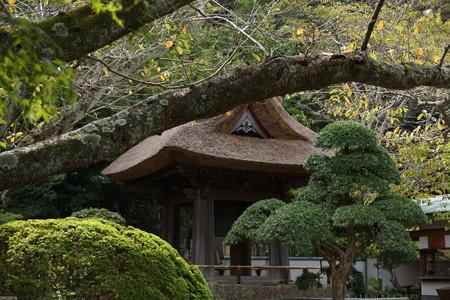 鎌倉-146