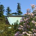 Photos: 北鎌倉-284