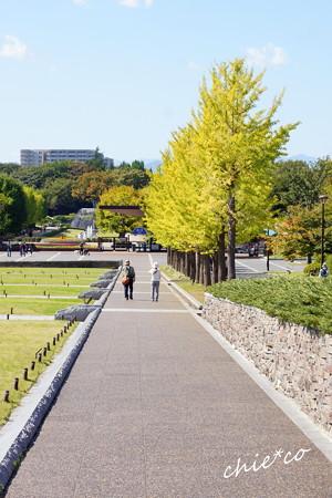 昭和記念公園-350