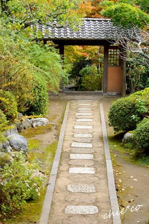 鎌倉-223