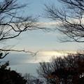 写真: 吾妻山公園-187