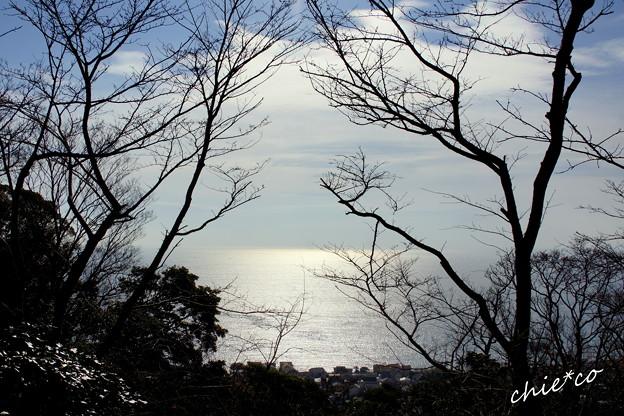 吾妻山公園-180