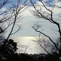 写真: 吾妻山公園-180