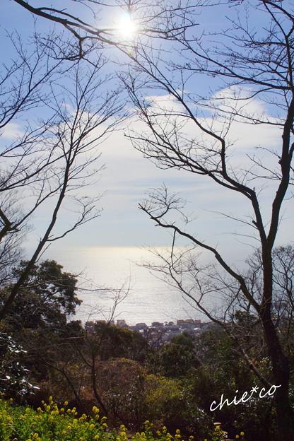 吾妻山公園-185