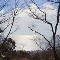 写真: 吾妻山公園-185