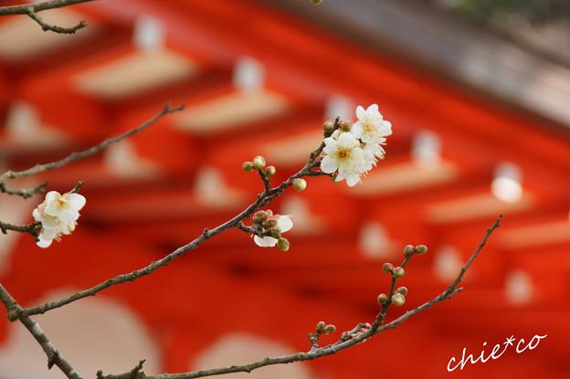 鎌倉-130