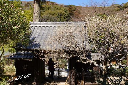 北鎌倉-347