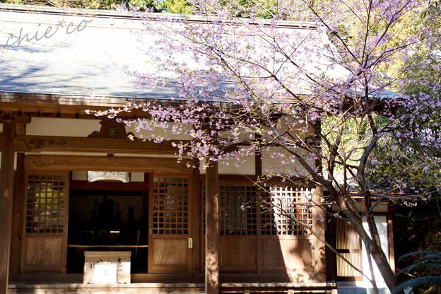 北鎌倉-361
