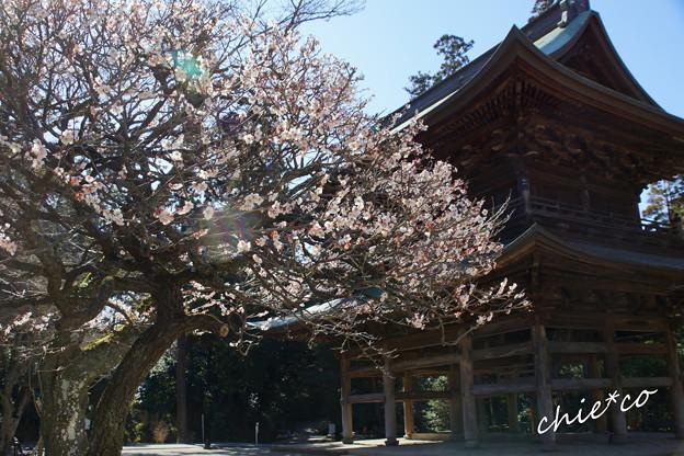 北鎌倉-365