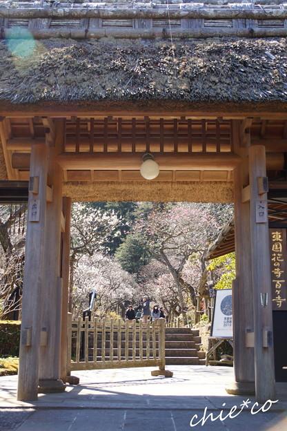 北鎌倉-403