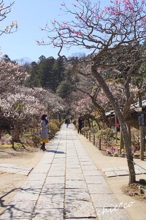 北鎌倉-405