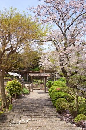 鎌倉-782