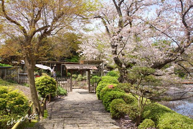 鎌倉-783