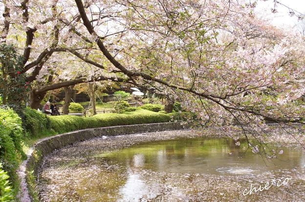 鎌倉-789