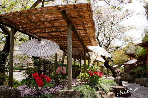 鎌倉-765