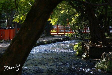 上賀茂神社にて・・1