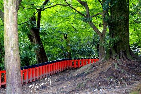 京都 伏見稲荷大社・・25