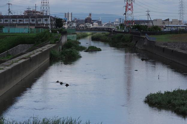 台風11号の翌日