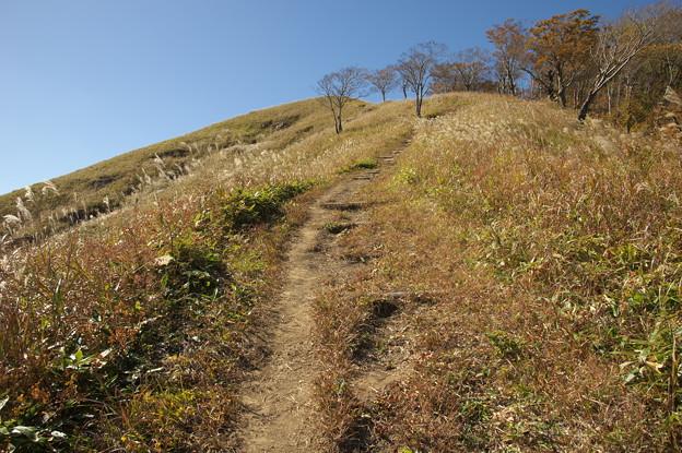 山頂へ続く道(1)
