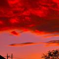 写真: 夕焼け雲