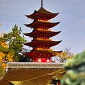 神殿より五重塔を望む