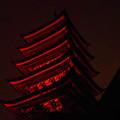闇に浮かぶ五重塔