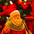 写真: たのしいクリスマスを!
