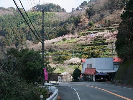 2010年2月28日美郷R193沿い03