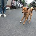 Photos: 雛~~!