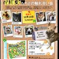 Photos: リスっこふれあい会&譲渡会