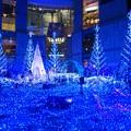 写真: 青の煌めき
