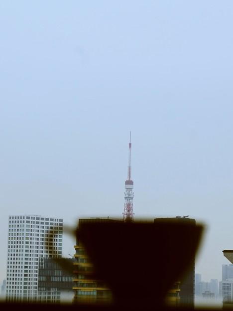 東京タワーとティータイム