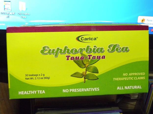 デング熱に効く薬草、タワタワ!   Herbal tea  for dengue (DHF) ?