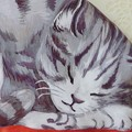 Photos: 猫のティーコージー AfternoonTea