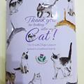 Photos: フィールドエスト【バニラファッジ】Thank you Cat!