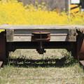 Photos: 春を運ぶ台車