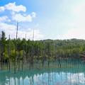 青い池-1
