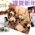 Photos: 20160110