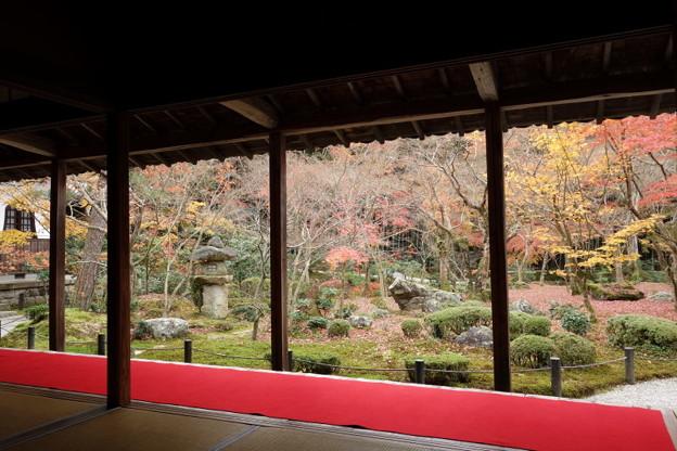 晩秋の圓光寺2015
