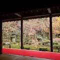 Photos: 晩秋の圓光寺2015