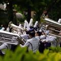 写真: 横浜パレード20160503i