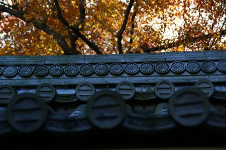 山門の屋根、報国寺091212-827