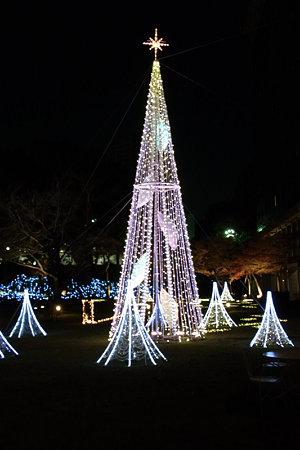 クリスマスイルミネーション(品プリ)20091216