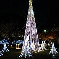 Photos: クリスマスイルミネーション(品プリ)20091216