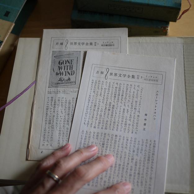 月報 世界文学全集別巻